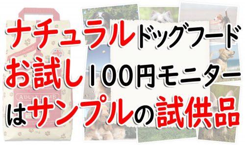 ナチュラルドッグフード100円モニター